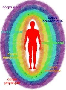 la bioenergie - Dénominations des corps subtils et visualisations des bulles éthérées portant les mêmes noms
