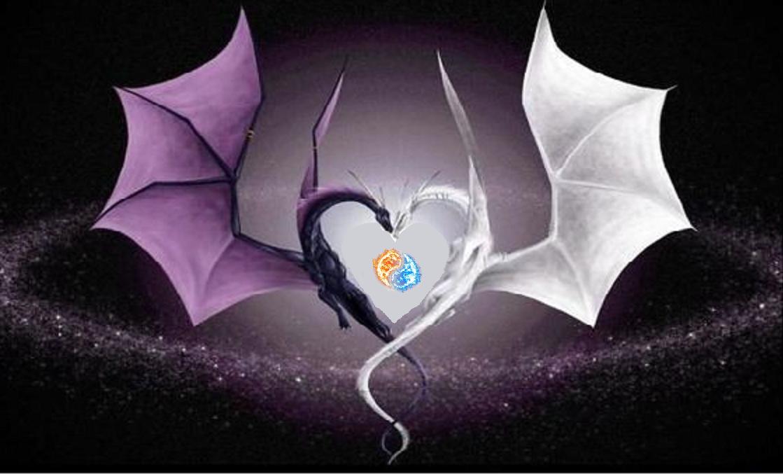 Coeur de dragon-yin yang
